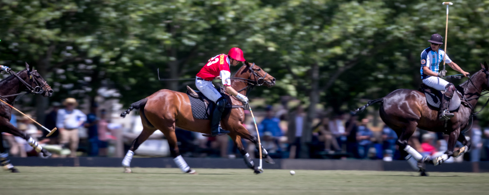 argentinia spain world polo championships